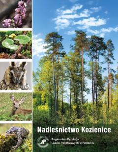 kozienice_folder_okladka_strona_web.jpg