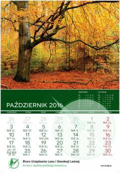 buligl_kalendarz_2016_PRINT_AMK_OK-11.jpg