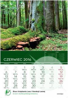 buligl_kalendarz_2016_PRINT_AMK_OK-7.jpg