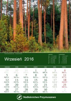 kalendarz_przymuszewo_strona.jpg
